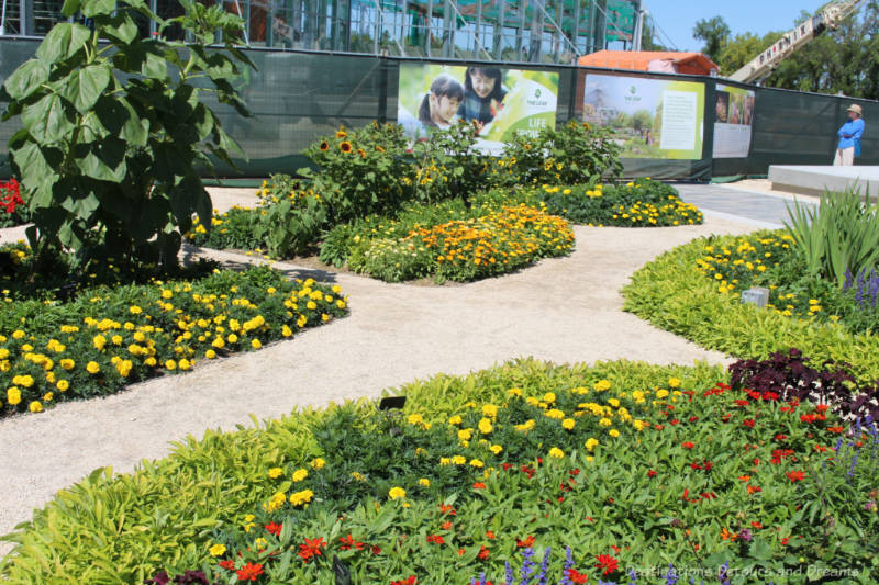 Collection of garden beds with pathway between them at the Kitchen Gardens at the Leaf Gardens in Winnipeg, Manitoba