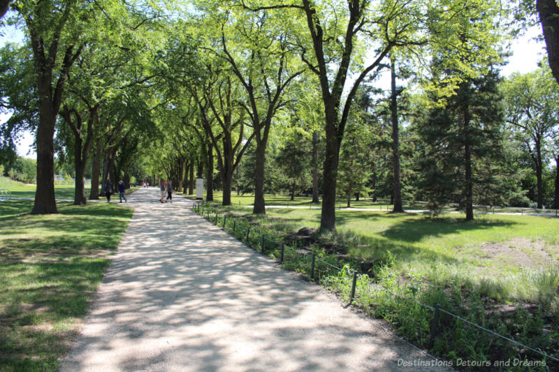 Walkway through mature trees and green area at the Gardens At The Leaf in Winnipeg's Assiniboine Park