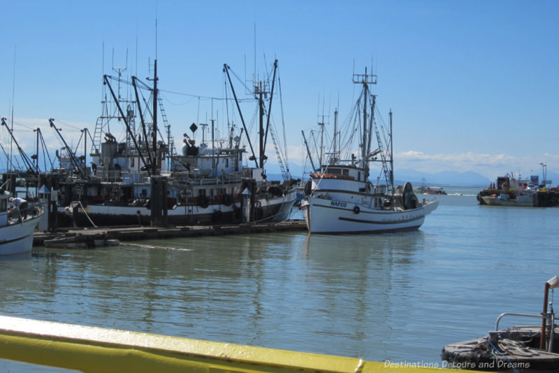 Boats in the harbour at Steveston, British Columbia
