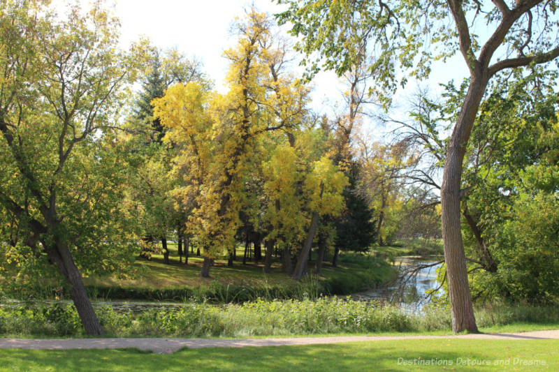 Trees with leaves turning yellow in fall along the curve of a small river in Manitoba