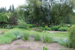 University of Alberta Botanic Garden: Garden In A Forest