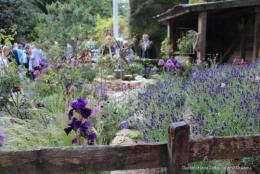 Chelsea Flower Show 2019 Artisan And Space To Grow Gardens