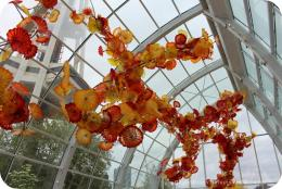 Magical Beauty at Chihuly Garden and Glass