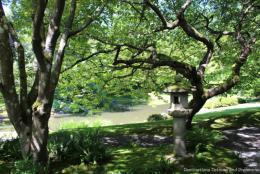 Nitobe Memorial Garden: An Authentic Japanese Garden in Canada